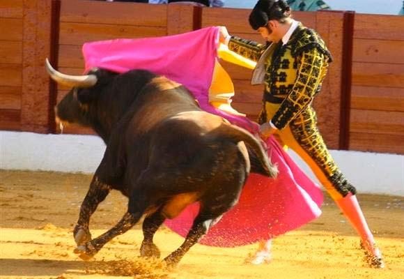 Image of a matador and bull