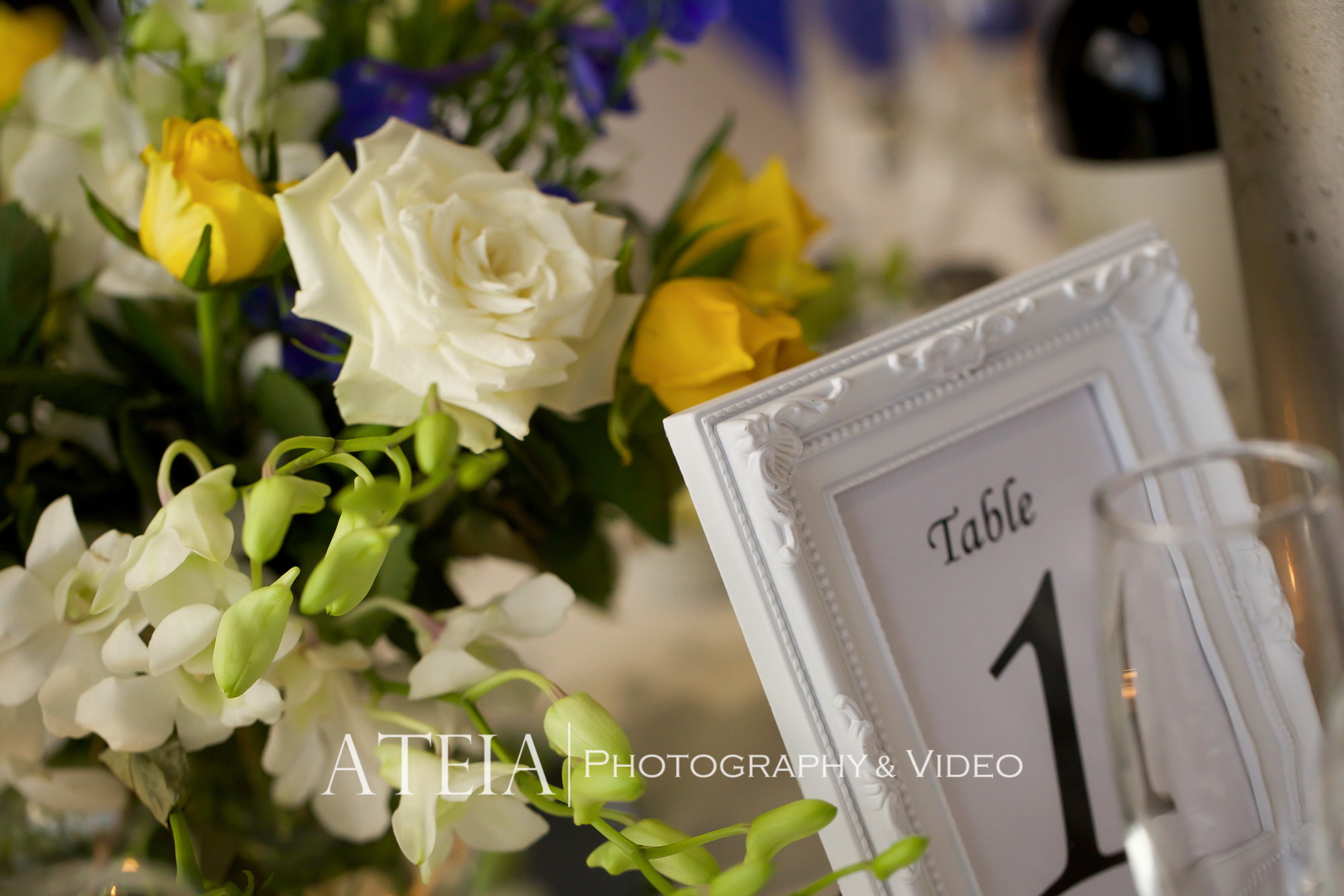 Ateia Photography & Video Wedding Photography Melbourne Brig