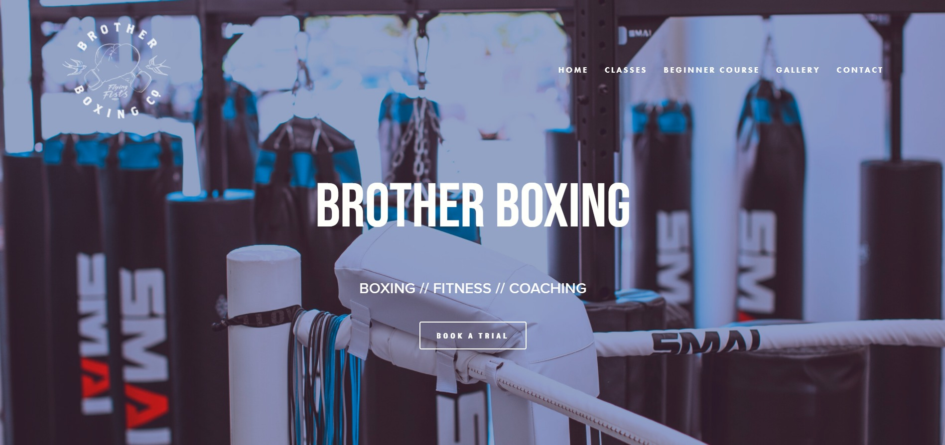 Brother Boxing